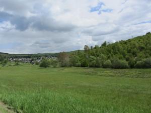 Dillenburg2015 014
