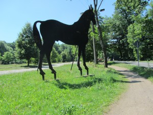 Moritzburg 063