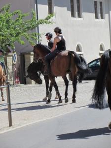 Moritzburg 072