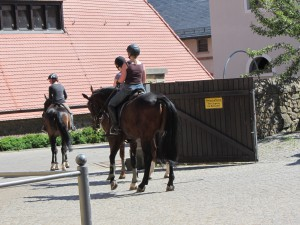 Moritzburg 073
