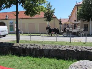 Moritzburg 077