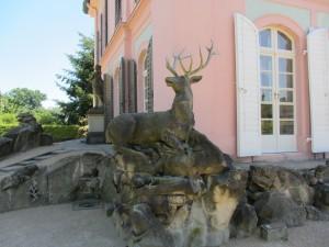 Moritzburg 102