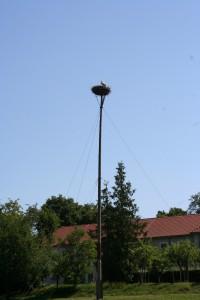 Moritzburg 114
