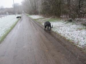 Schnee 002